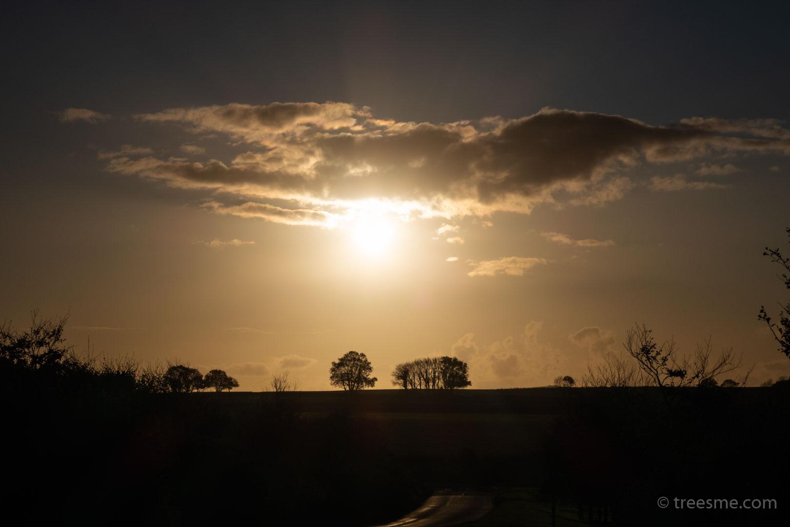 Autumn (October) – The Evening Sun and Light Cloud, Looking Towards Bodmin Moor
