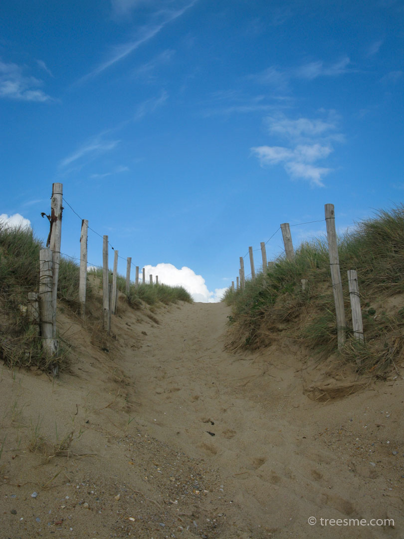 Spring (May) - Path leading away from the beach SW France