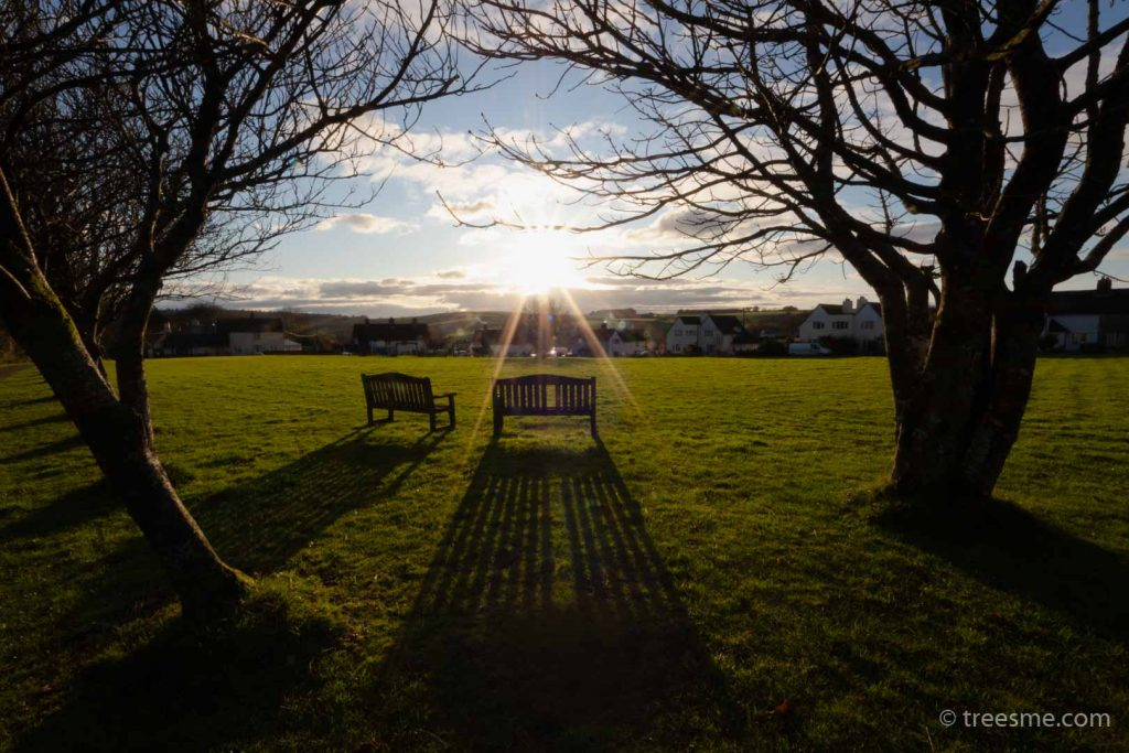 Winter (December) - The First Day of Winter in Stoke Climsland, Cornwall