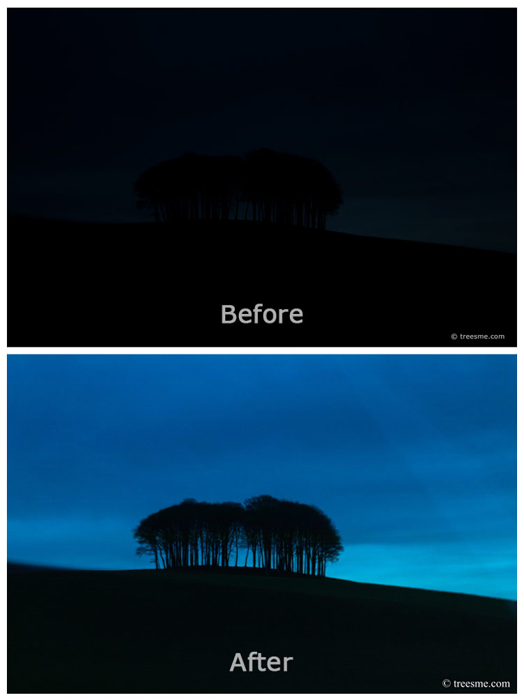 Those Trees (Cookworthy knapp) - Original Vs Processed (Featured Image)